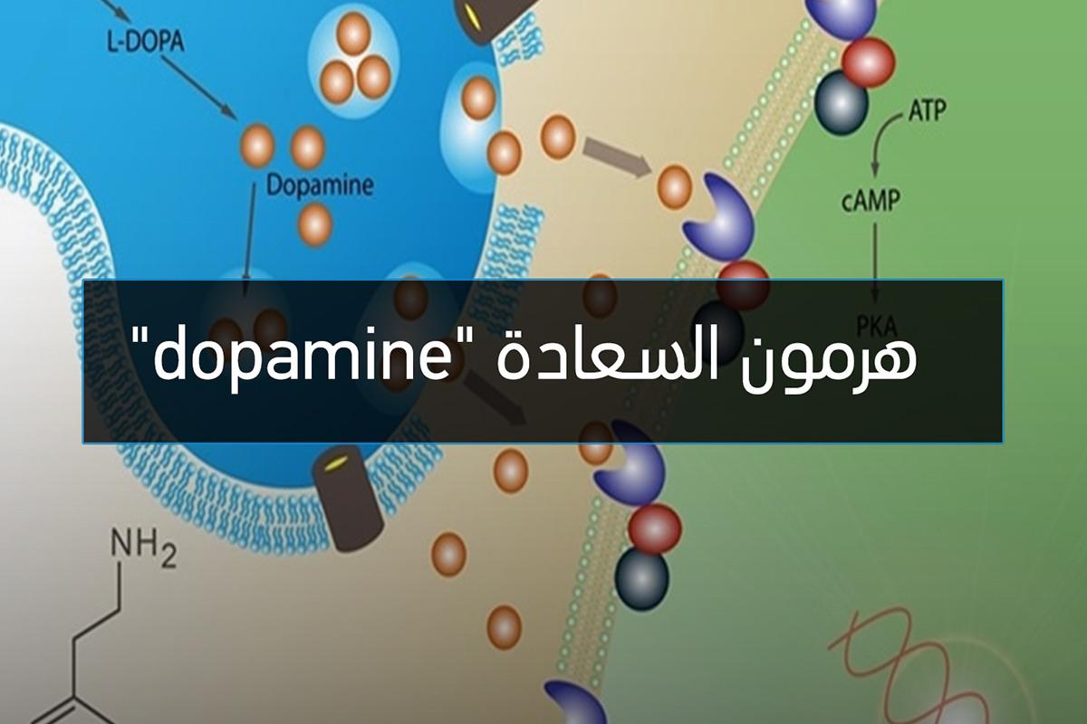هرمون السعادة Dopamine الجرعة اليومية من العلوم